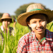 Burmese female farmer — Stock Photo