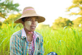 Mature Myanmar farmer — Stock Photo