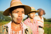Myanmar farmer standing in row — Stock Photo