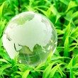 Environment and conservation — Stock Photo #15491943