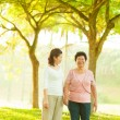 Asian family walking at outdoor — Stock Photo