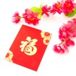 Chinese new year festival — Stock Photo #18972949