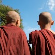 Rear view of two little monks - Stock Photo