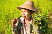 Traditional Asian female farmer — Stock Photo
