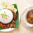Stock Photo: Nasi lemak hot and spicy