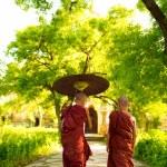 Buddhist monks — Stock Photo