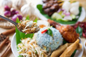 Malaysia food — Stock Photo