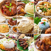 Asian food collection. — Stock Photo