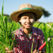 Asian traditional farmer — Stock Photo