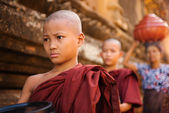Southeast Asian young Buddhist monks walking morning alms — Stock Photo