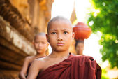 Young Buddhist monks walking morning alms — Stock Photo