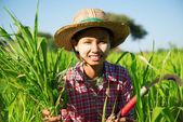 Azjatycki tradycyjnego rolnika — Zdjęcie stockowe