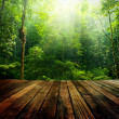 Stock Photo: Green forest.