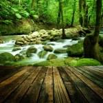 Mountain waterfall — Stock Photo #33130267