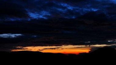 Bosque tropical en amanecer — Vídeo de stock