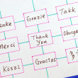 The words Thank You in different languages concepts of appreciation and thankfulness — Foto de Stock