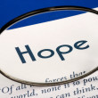 Focus on the word Hope concepts of expectation and future — Lizenzfreies Foto