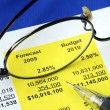 Audit the proposed financial statement — Stockfoto