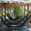 Hammock — Stock Photo #21716763