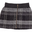 Stock Photo: Women's plaid skirt