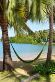 Hammock on a tropical beach — Stock Photo