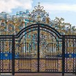 Gold gate, entrance to Catherine's Palace, St. Petersburg — Stock Photo #29740467