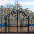 Gold gate, entrance to Catherine's Palace, St. Petersburg — Stock Photo