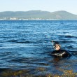 Underwater hunter in a wetsuit in water — Stock Photo
