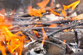 Tree branches burning. — Stock Photo