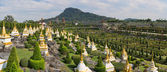 Nong Nooch park — Stock Photo