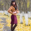 Glamour girl in autumn — Stock Photo #33216753