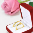 Pair of wedding rings - Stock Photo