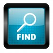 Find icon — Stock Photo #13318481