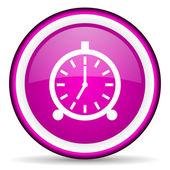 Wecker violett glänzend Symbol auf weißem Hintergrund — Stockfoto