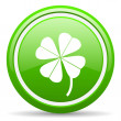 Four-leaf clover green glossy icon on white background — Stock Photo