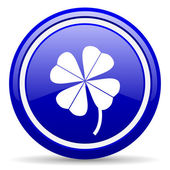 Four-leaf clover blue glossy icon on white background — Stock Photo