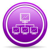 Network violet glossy icon on white background — Stock Photo