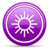 Zon violet glanzende pictogram op witte achtergrond — Stockfoto