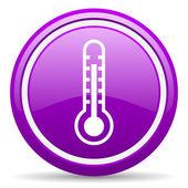 Thermometer violett glänzend symbol auf weißem hintergrund — Stockfoto