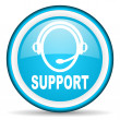 Support blue glossy icon on white background - Stock Photo