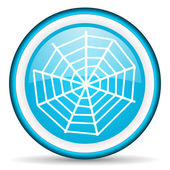 Spider web blue glossy icon on white background — Stock Photo