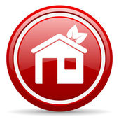 Home red glossy icon on white background — Stock Photo