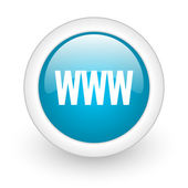 Www blue circle glossy web icon on white background — Stock Photo