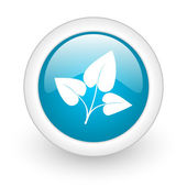 Eco blue circle glossy web icon on white background — Stok fotoğraf