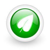 Leaf green circle glossy web icon on white background — Stock Photo