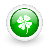 Four-leaf clover green circle glossy web icon on white background — Stock Photo