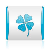 Four-leaf clover blue and white square web glossy icon — Stock Photo