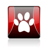 Animal footprint red square web glossy icon — Stock Photo