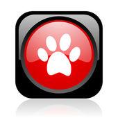 Hayvan ayak izi siyah ve kırmızı parlak web simgesi kare — Stok fotoğraf
