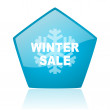 Winter sale blue pentagon web glossy icon — Stock Photo #24229551